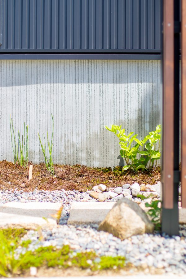 外壁に沿った緑